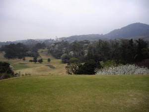 IMGP2011 f15
