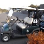 IMGP3839 Cart
