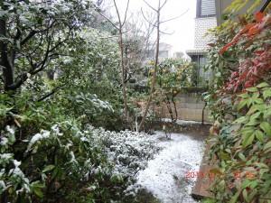 CIMG0271 snow