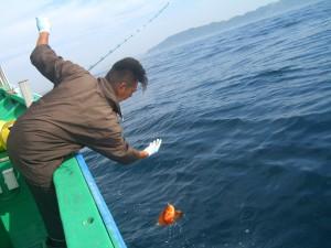 CIMG5372 キントキ釣り